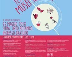 Festa dei musei scientifici - IX edizione