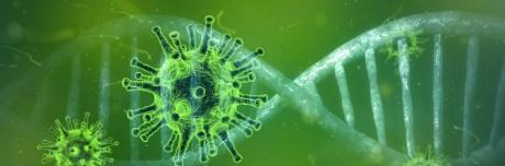 Testosterone e forme gravi di Covid-19: uno studio coordinato dall'Università di Siena pubblicato su EBiomedicine