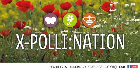 """Presentazione del progetto di Citizen Science """"X-Polli:Nation"""""""